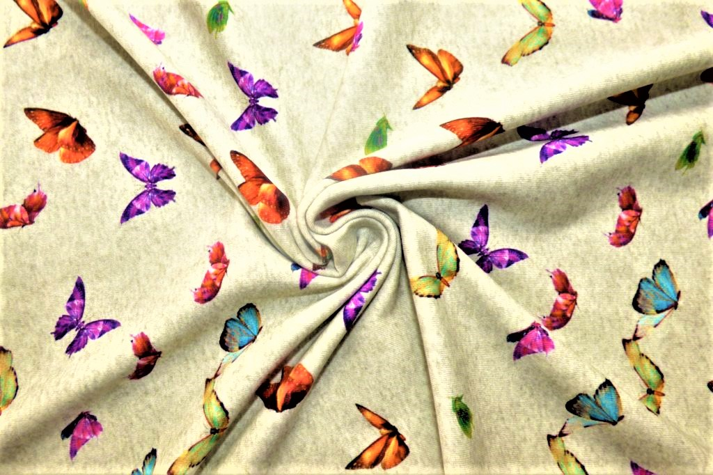 Papillon-gris2-JI17-1024×682